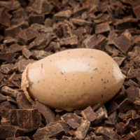 Helado de chocolate negro con chispas de chocolate negro 69% de cacao.